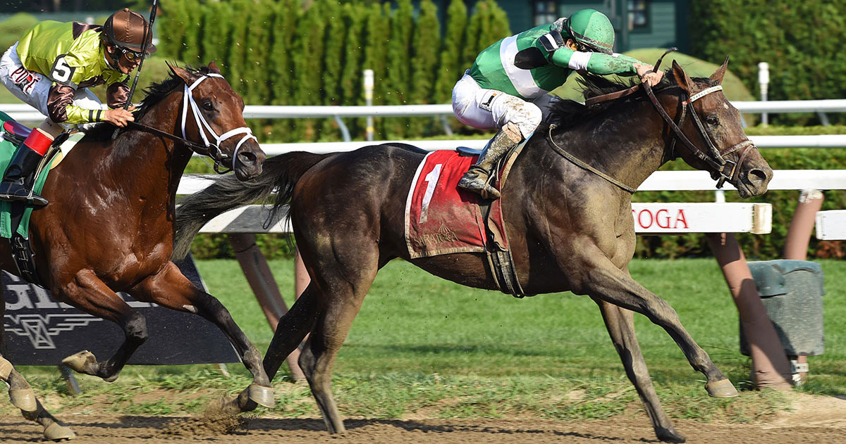 Picture of Exaggerator